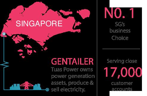 Singapore Top Electricity Retailer